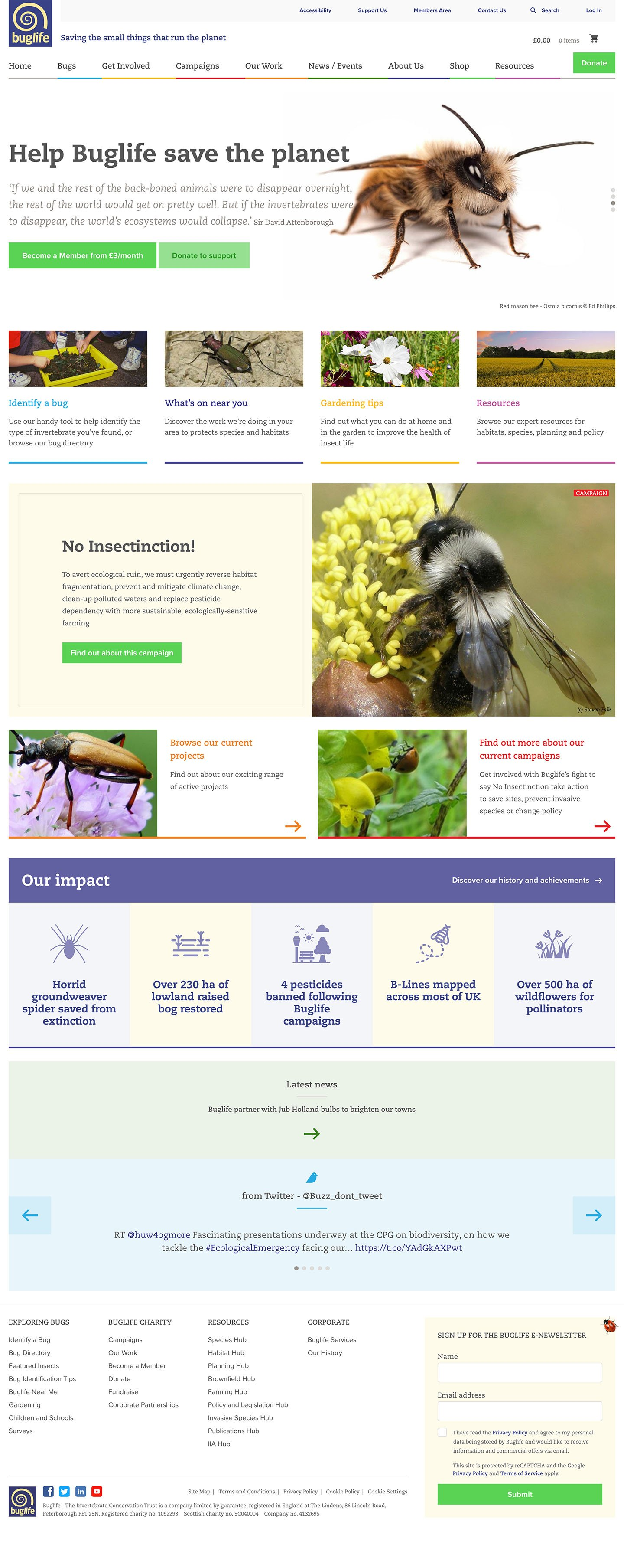 Buglife Homepage Laptop Screenshot