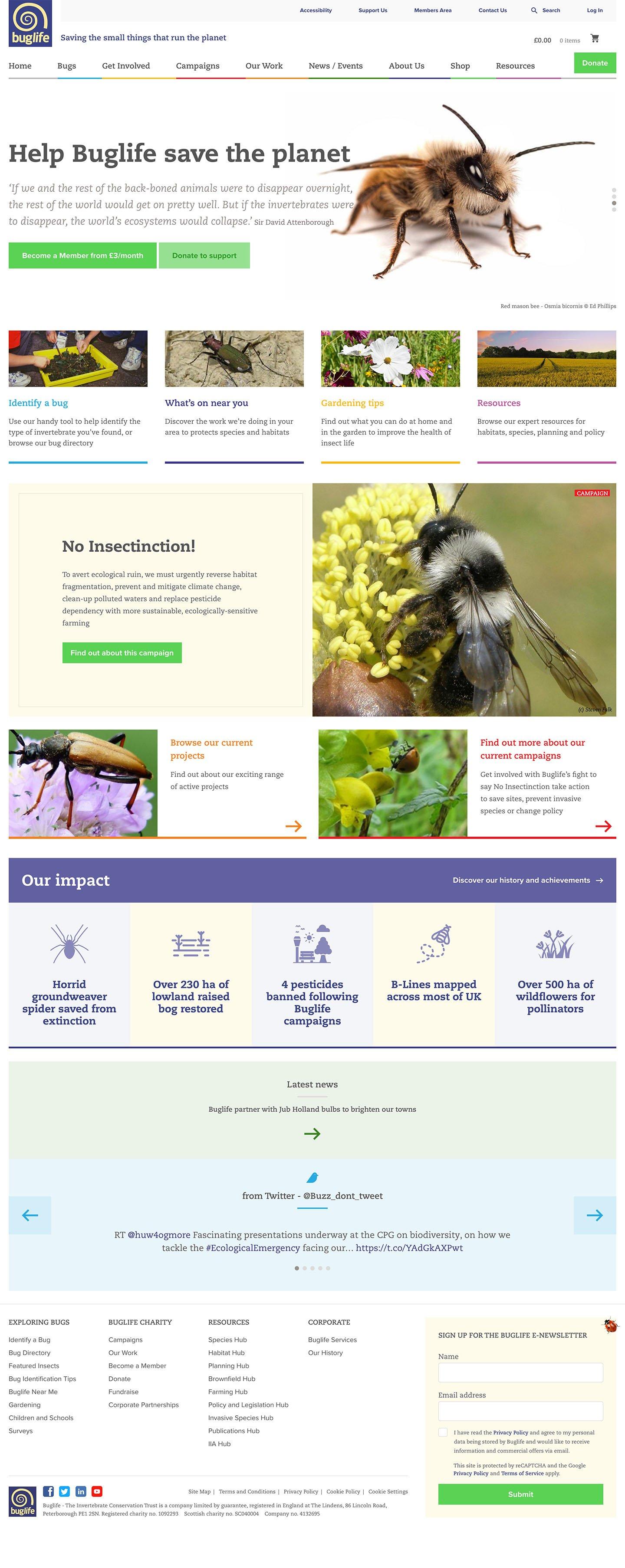 Buglife Homepage Laptop Screenshot